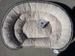 b4g pooch planet dog bed on modern home decoration 10 bed 5 jpeg