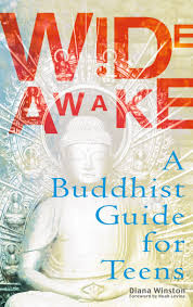Wide Awake A Buddhist Guide For Teens Diana Winston 9780399528972 Amazon Books