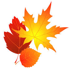 994x985 Autumn Leaf Clipart