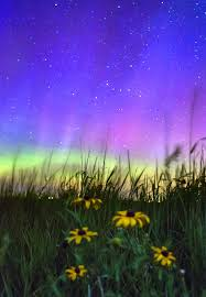 Northern Lights dance outside Lincoln Local