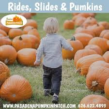 Monrovia Pumpkin Patch by Pasadena Pumpkin Patch California Haunted Houses