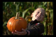 Pumpkin Patches Cincinnati Ohio Area by Laity Pumpkin Patch Home Fall Time Pinterest Halloween