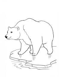 Dibujos Para Colorear Animales Del Bosque Dibujos Colorear Animales Bosque Dibujos Para Colorear Para Ninos De Animales Salvajes