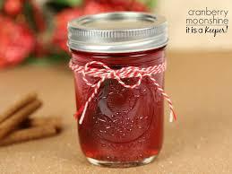 Pumpkin Pie Moonshine Crock Pot by Cranberry Moonshine It Is A Keeper