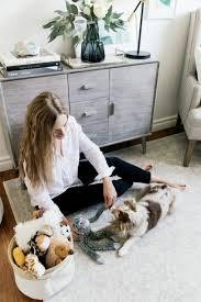 Wooden Designer Shelf Pet Society by Homegoods Pet