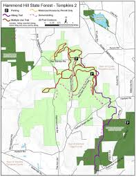 Hammond Hill State Forest Map - NYS Dept. Of Environmental ... Alachua Countys Best Birding Sites Ithaca Trails Park Missouri State Parks 9 Acre Building Lot Bordering Land Near Ny Landquest Forest Walk In The Dupont Waterfalls Tour Hike Cabin And Yellow Barn Cayuga Trail Roy H Preserve Finger Lakes Trust Hammond Hill Go Hiking Ramapo Mountain Njurbanforestcom