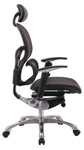 Workpro Commercial Mesh Back Executive Chair by Zebra Desk Chair Zebra Chair Dsc Z Maker With Zebra Desk Chair