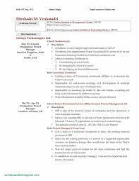 100 Free Professional Resume Templates Modern Perfect Modern