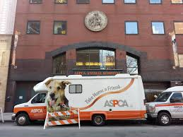 File:ASPCA Building.jpg - Wikimedia Commons Wwwspokegraphicsandglasscom 2012 Subaru Forester Aspca Vehicle Stellas Spay Day With Mobile Spayneuter Clinic Youtube Animal Cruelty Mobile Unit Unveiled By Nypd Wpix 11 New York Fenwick Keats Sponsors Adoption Van In Cooperation Petas Clinics Division Peta Best Friends The Hsus Rethink Pit Bulls Animals 247 The Humane Alliance Ending Animal Homelness Nyc Paws Parade Adoptapalooza And More Leave You No Reason To Hurricane Irma Direct Relief Dogfight Sweep Nets Two Arrests 64 Dogs Seized Local Qnlinecom Hundreds Of Thousands Dollars Already Spent On Westport Control