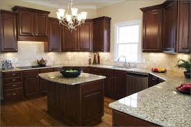 dark kitchen cabinets light countertops dark cabinets with light
