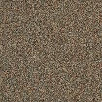 tandus infinity carpet tile