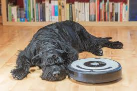 best roomba for pet hair vacuum best robotic vacuum cleaners