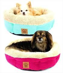 Harry Barker Dog Bed by Dog Beds Best High Sided Dog Beds Uk Noten Animals Raised Dog Beds