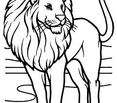 Drawing Coloring Pages Lions 89 For Your Download With Important Segment Of 6 Gallery