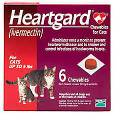 heartgard for cats heartgard chewables for cats 6 pack cat rx medication petsmart