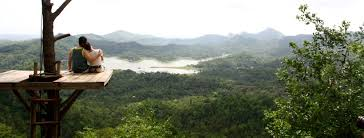 Wisata Alam Kali Biru Jogja Kulon Progo