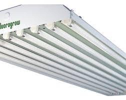 fluorescent lights trendy 48 fluorescent light bulbs 34 48 inch