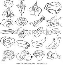 vector illustration of ve ables collection in black and white