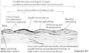 Trough Cross Bedding by Geol342 Sedimentation And Stratigraphy