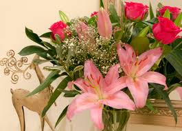 Elegant Flowers For Christmas | Flower Press 12 Best Florists In Singapore With The Prettiest Fresh Enjoy Flowers Review Coupon Code September 2018 Whosale Flowers And Supplies San Diego Coupon Code Fryouflowerscom Valentines Day 15 Off Fall Winter Flower Walls The Wall Company 1800flowerscom Black Friday Sale Free Shipping 16 Farmgirl Flowers Discount Code Off Cactus Promo Ladybug Florist Cc Pizza Coupons Discount Teleflorist Wet Seal Discount 22 1800 Coupons Codes Deals 2019 Groupon Unique Free Delivery Beautiful Fruit Of Bloom