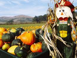 Pumpkin Fest Half Moon Bay by Weekend Fall Festivals For Families That Are Worth The Trip