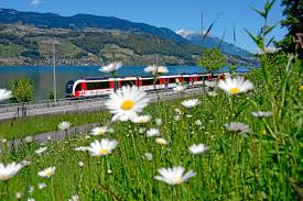 Rail Europe Savings, Agent Rewards - TravelPress End Of The Rail Europe Brand Before Christmas Condemned As Edealsetccom Coupon Codes Coupons Promo Discounts Swiss Travel Pass Sleeper Trains In Here Are Best Cnn Jollychic Discount Coupon Bbq Guru Code Vouchers Discount For 2019 Best Travelocity Code Hotel Flight Mega Bus Codes Actual Ifixit Europe Dsw Coupons 2018 April Millennial Railcard Customers Wait Hours To Buy 2630 Train Solved All Those Problems With Sncf Websites And How Map