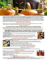 Pumpkin For Dog Constipation by Living Green With Pets Pumpkin Pumpkin Pumpkin The Creative Cat