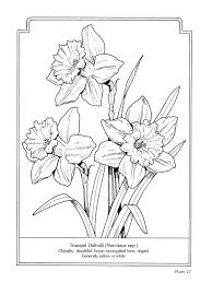 The Language Of Flowers Coloring Book Pintrest Board With Many Digis