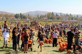 Sycamore Pumpkin Fest Run by Fall Pumpkin Festivals In September And October 2015