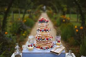 Naked Cake And Cupcakes