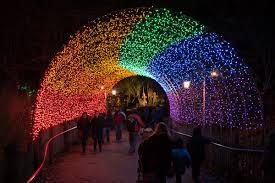 Cincinnati Zoo Halloween by Photos Festival Of Lights Cincinnati Refined