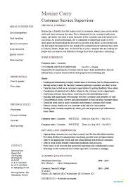 Customer Service Supervisor Resume Unique Job Summary Sample Server Description Child Of
