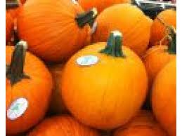 Oak Glen Pumpkin Patch Address by Pumpkin Patches Corn Mazes Fall Festivals In The Bolingbrook
