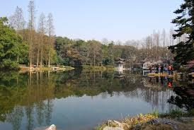 xihu qu 2018 avec photos hangzhou botanical garden in hangzhou attraction in hangzhou