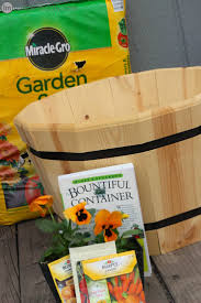 Bigs Pumpkin Seeds Walmart by How To Plant A Garden Your Child Will Love