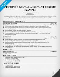 New Dental Assistant Resume No Experience