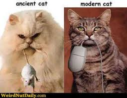 modern cat pictures weirdnutdaily ancient vs modern cat