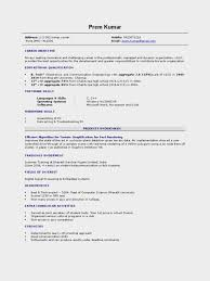 Computer Science Student Fresher Resume Sample