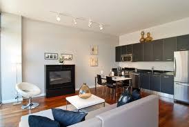 design living room track lighting exclusive idea