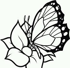 Free Printable Butterfly Coloring Pages For Kids Flowers And Butterflies