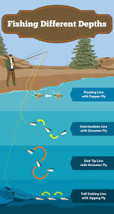 Sink Tip Fly Line Attachment by 62 Best Fishing Advice Images On Pinterest Fishing Tips Fishing