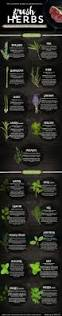 Earthbound Halloween Hack Plot by Best 25 Cooking Herbs Ideas On Pinterest The Herbs Herb