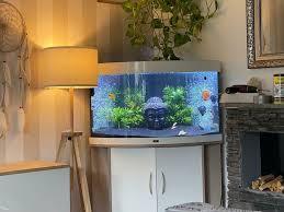 juwel 190l aquarium mit helialux spectrum 700 komplett