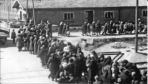 chambre a gaz 1943 auschwitz vers la chambre à gaz 2 jpg florentine et jean sueur