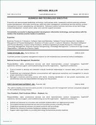Sample Resume Objectives Sales Representative 20 Information Security Objective