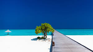 100 Maldives Beaches Photos Luxury Indian Ocean Island Vacations Tailor Made Tours