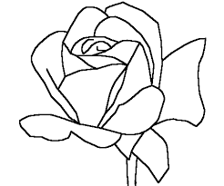 Download Rose Coloring Pages Printable Or Print