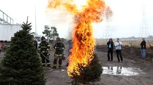 Christmas Tree Disposal Nyc 2015 by Take Your Christmas Tree To The Curb Before It Burns Down Your