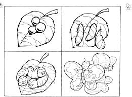 Life Cycle Of A Butterfly Coloring Page Plant Milkweed Simple Monarch Butterflies Free Printable Pages