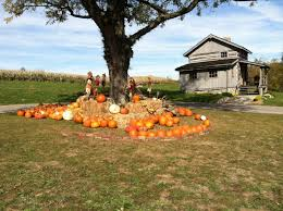 Hamilton Ohio Pumpkin Festival by 14 Pick Your Own Pumpkin Patches In The Tri State Cincy Weekend